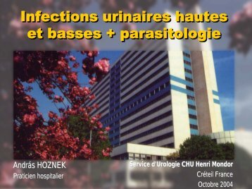 Infections urinaires hautes et basses + parasitologie - Service d ...