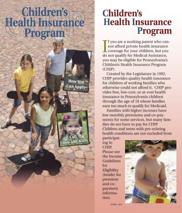CHIP Brochure 2013