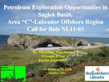 2011 – Call for Bids NL11-03 - Department of Natural Resources ...