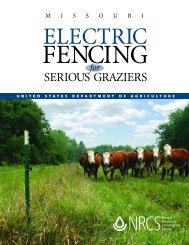 Electric Fencing for Serious Graziers - NRCS Home - US ...