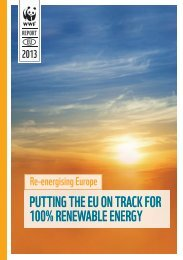 """""""Putting the EU on Track for 100% Renewable Energy,"""" report - WWF"""