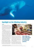 The Economics of Whaling Today - WWF - Page 3