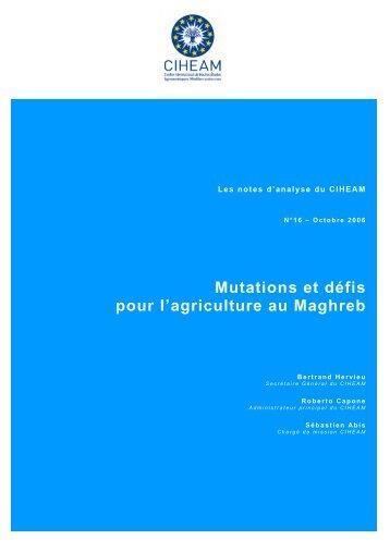 Mutations et défis pour l'agriculture au Maghreb