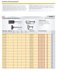 Qualität und Anwendung P1 - LUKAS-ERZETT