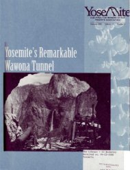 "(Summer 2000) ""Yosemite's Remarkable ... - Yosemite Online"