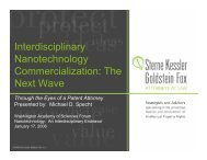 Interdisciplinary Nanotechnology Commercialization - Washington ...