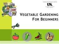 Basic Vegetable Gardening