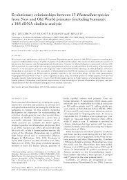 Evolutionary relationships between 15 Plasmodium ... - ResearchGate