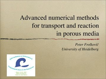 Advanced numerical methods for transport and ... - G-CSC Home