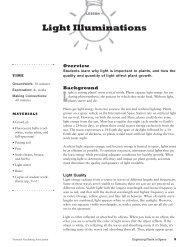 Light Illuminations - KidsGardening.com