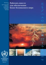 WMO Natural Disaster Prevention and Mitigation ... - E-Library - WMO