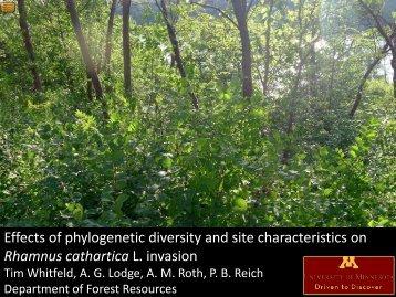 Woody species richness vs. total buckthorn abundance