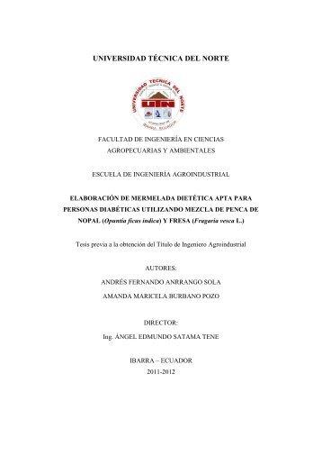 03 EIA 322 Tesis.pdf - Repositorio UTN