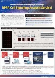 RPPA Cell Signaling Analysis Service!