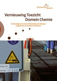 Vernieuwing Toezicht Domein Chemie - Inspectieloket