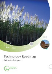 Technology Roadmap - biofuels for Transport - International Energy ...