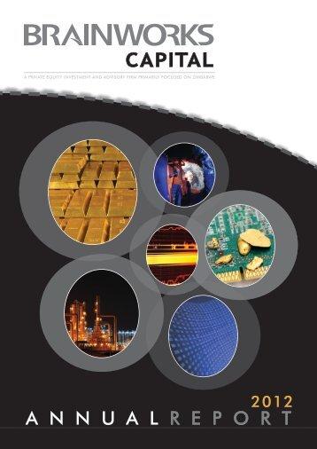 Brainworks_Capital_Management_2012_Annual_Report