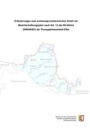 Erläuterungen zum schleswig-holsteinischen Anteil am ...