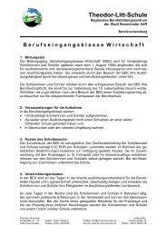 Theodor-Litt-Schule - Stadt Neumünster