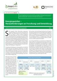 Energiespeicher – Herausforderungen an Forschung und ... - Bizeps