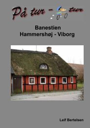 Hammershøj - Viborg - lgbertelsen.dk