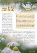 amille - Seite 2
