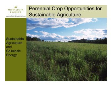 Sustainable Agriculture and Cellulosic Energy - The Minnesota Project