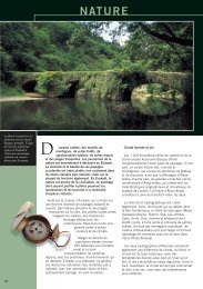 nature - Euskadi