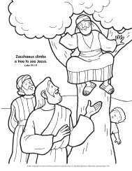 Zacchaeus climbs a tree to see Jesus.