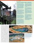 TERUG NAAR DE BRON - Page 7