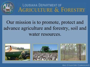 Louisiana Dept of Agriculture & Forestry - Louisiana Agricultural ...