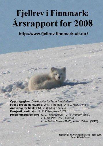 Årsrapport for 2008. - Fjellrev i Finnmark