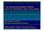 the indonesian mineral mining sector: prospects and challenges