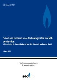 Small and medium scale technologies for bio-SNG production - SGC
