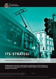 ITS-strategi