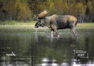 Statskogs årsrapport 2007