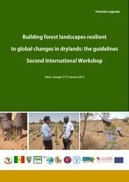 Building forest landscapes resilient to global changes in drylands ...