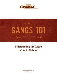 Understanding the Culture of Youth Violence - GANG