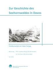 Zur Geschichte des Seehornwaldes in Davos - Natkon.ch - Home