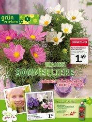 sommerlIeBe - Gartencenter Fahr Dornstetten