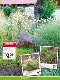sommerlIeBe - Gartencenter Fahr Dornstetten - Seite 4