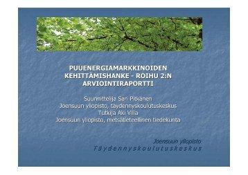 Roihu 2, ulkopuolinen arviointi, Sari Pitkänen, Joensuun yliopisto.pdf