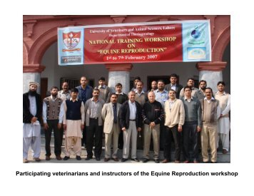Participating veterinarians and instructors of the Equine ...