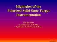 Download transparencies (PDF) - Polarisiertes Target Bonn ...