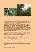 Reisebericht anzeigen... - Ihr Reiselotse Herbert Bröckel Reisebüro ... - Seite 7