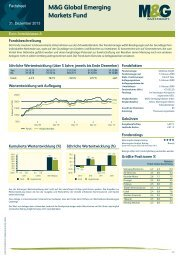 M&G Global Emerging Markets Fund - Euro A - M&G Investments