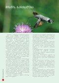 nakresi - Nacres - Page 2