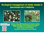 Ecological Management of Winter Weeds in Pea-Wheat-Corn Rotation