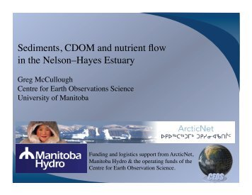 Sediments, CDOM and nutrient flow in the Nelson–Hayes Estuary
