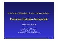 Molekulare Bildgebung mit PET (H. Harke)